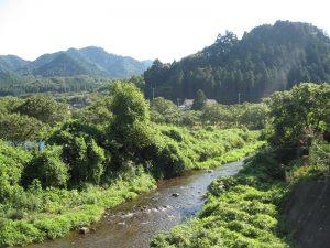 和田峠の麓