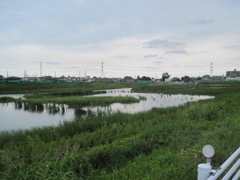 伝右川の調整池