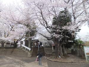 東光寺の入り口