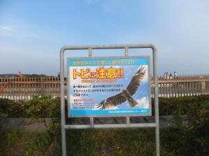 江の島 (2)