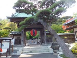 長谷寺 (1)