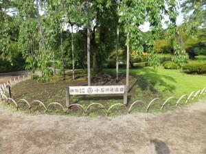 小石川後楽園の入り口
