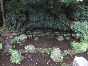 神田川の源流の一つ