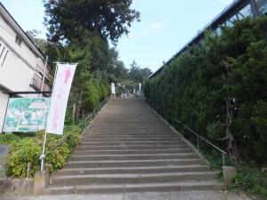 飯盛山 (4)