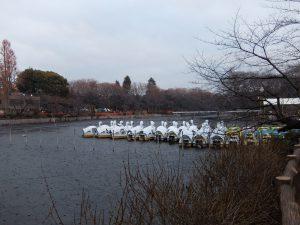 白鳥型ボート