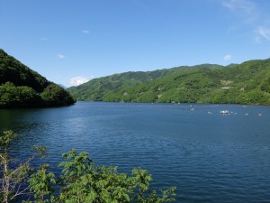 草木ダム湖