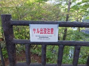 華厳の滝 (2)