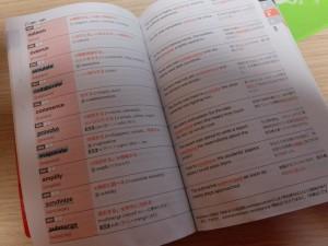 英検1級の単語学習 (1)