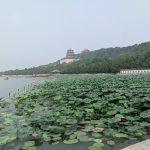 北京旅行 その8